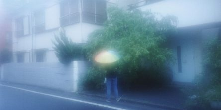#stayshoot/市橋織江(Orie Ichihashi)