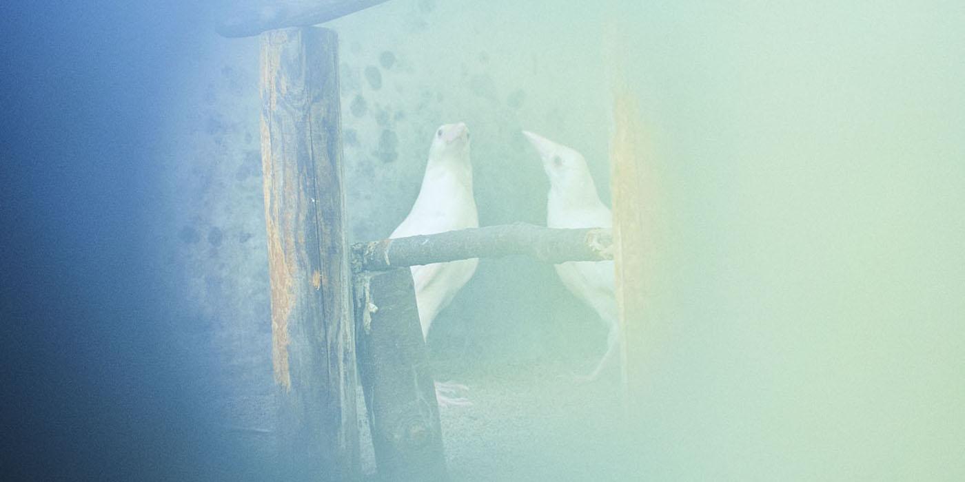 竹之内祐幸作品展「距離と深さ」