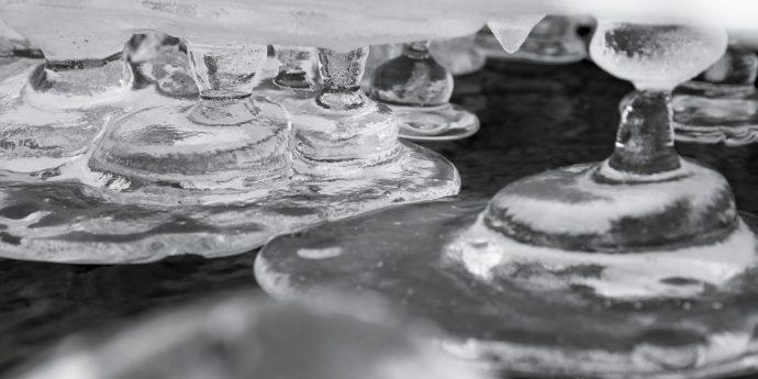 日本橋高島屋 × PICTORICO 共同企画展・GOTO AKI 写真展「テラ(地球)の声」