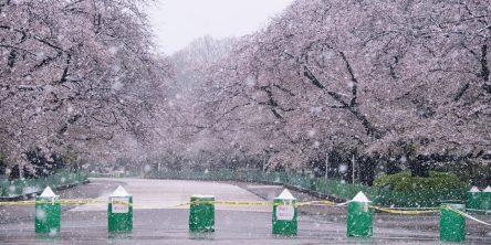 初沢亜利写真展「東京コロナ禍2020」